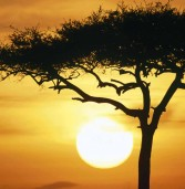 Top Places to visit in Africa