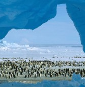 Top Places To Visit in Cool Lonely Planet Antarctica