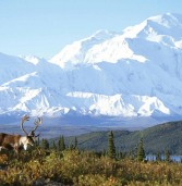Top Places to visit in Beautiful Alaska