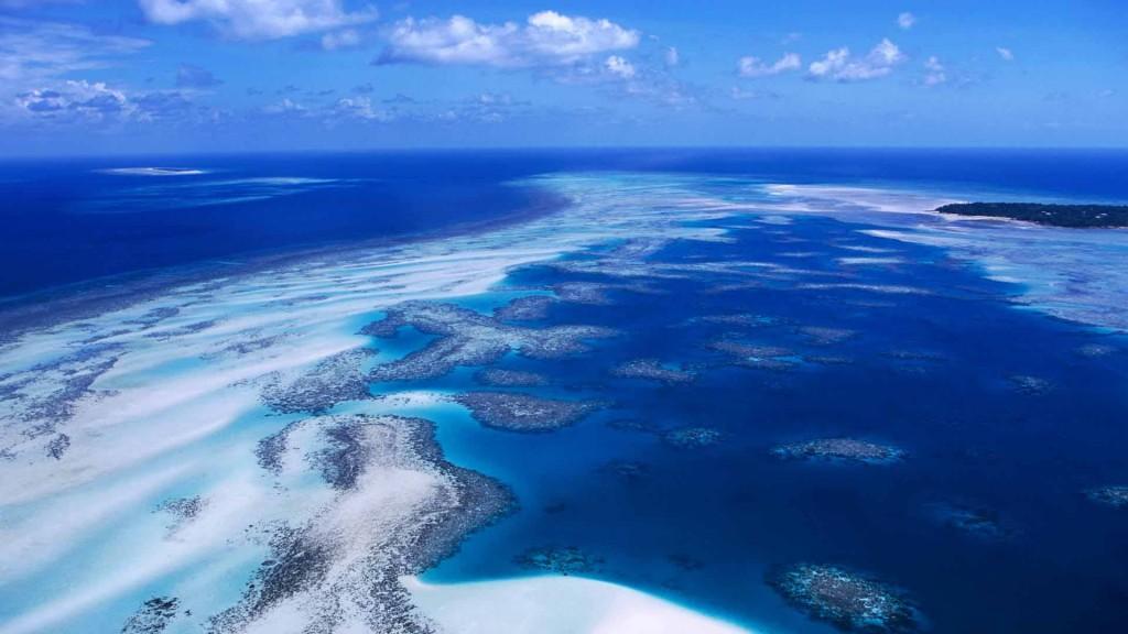 Coral Reef, Torres Strait Islands, Australia
