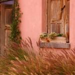 Historic Adobe Home, Tucson, Arizona