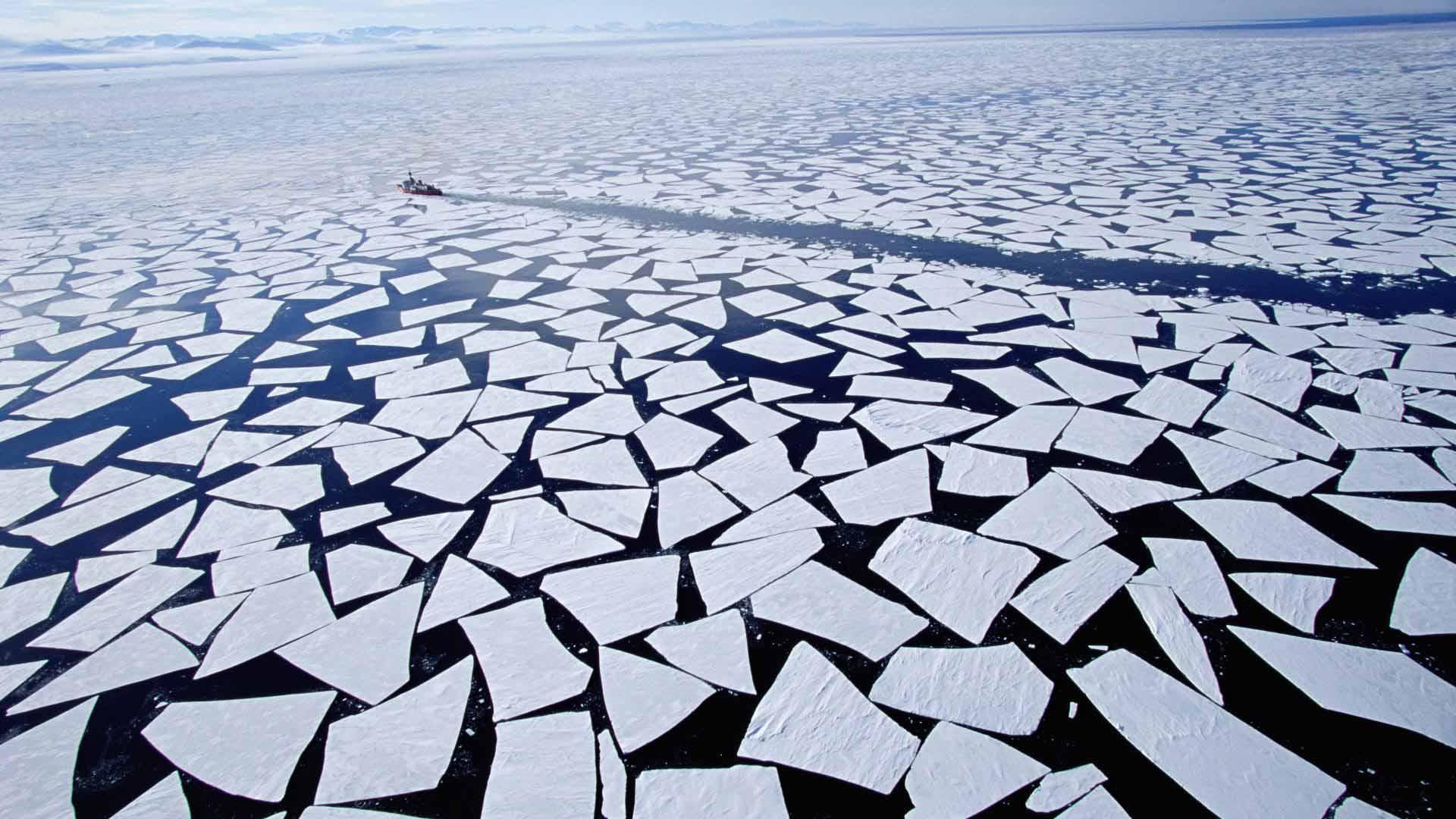 Atka Bay, Weddell Sea, Antarctica