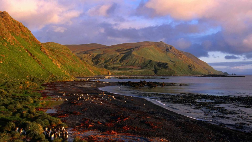 Sandy Bay at Dawn, Macquarie Island, Antarctica