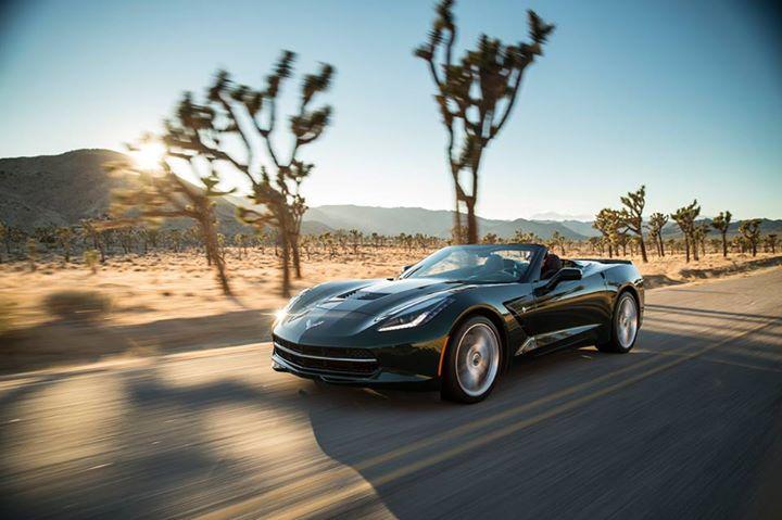 Black Corvette 7