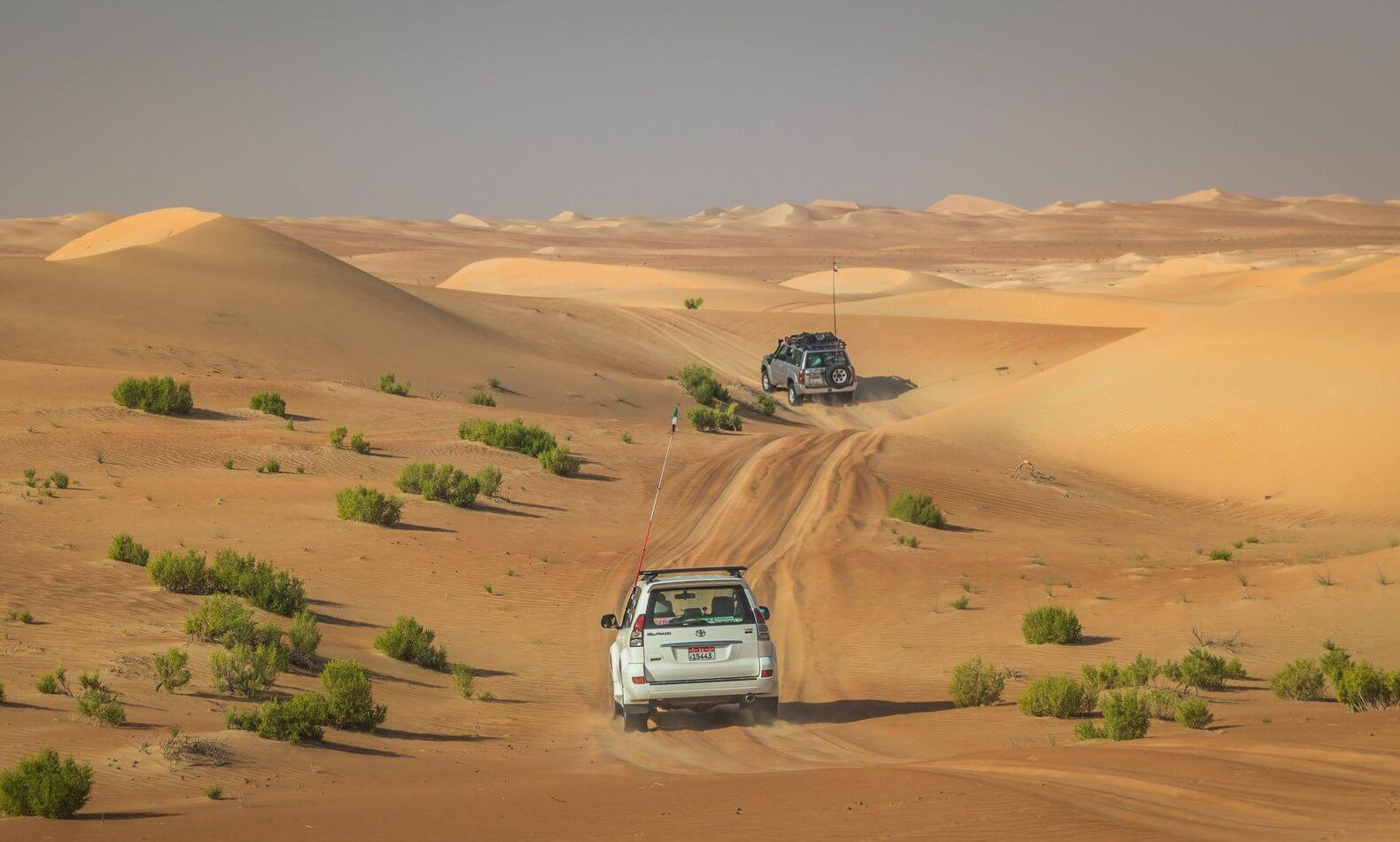 Abu Dabhi Desert