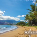 Holiday in Hawaii