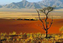 Namibia Info